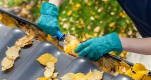 Warum Dachrinnen reinigen